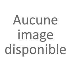 Fruit de palmier & fruit jacquier 565g